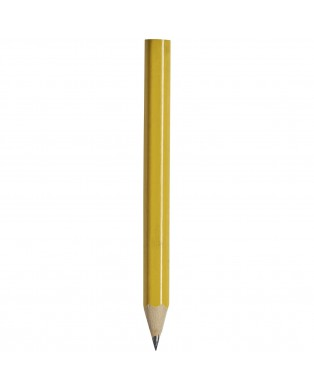 Lápis pequeno com corpo...